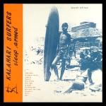 Kalahari Surfers